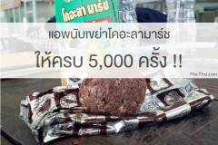macthai-app-count-koala-march-shake-5000-time
