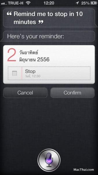 macthai-app-count-koala-march-shake-5000-time-siri