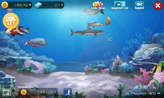Fish-Island-review-macthai-016