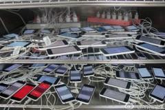 pegatron-iphone-5c