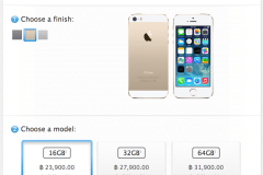 iphone-5s-apple-store-online-now-delivery-with-in-1-2-week