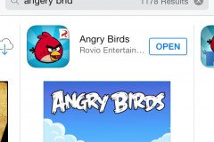 Angry Birds App Store Misspell