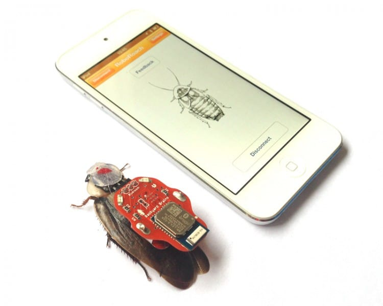 RoboRoach_iPod