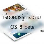 เรื่องควรรู้เกี่ยวกับ iOS 8 beta: เล่นแล้วหลุดประกันไหม, มีปัญหาอะไรบ้าง, แก้อย่างไร