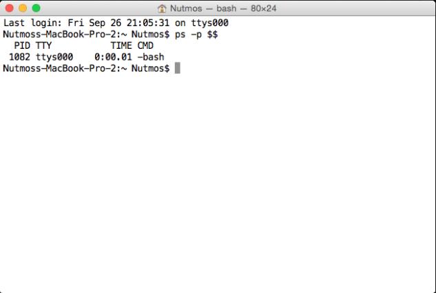 bash-shell-terminal
