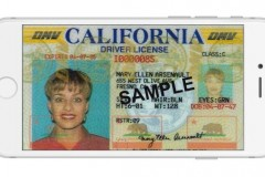 driver-ID-iPhone-640x375