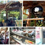 macthai-exclusive-maccafe-chiangmai-cover