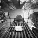 ผลการดำเนินงานไตรมาสล่าสุด Apple ทุบสถิติอีกครั้ง iPhone ขายได้ 61 ล้านเครื่อง !!