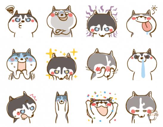 Husky_collection