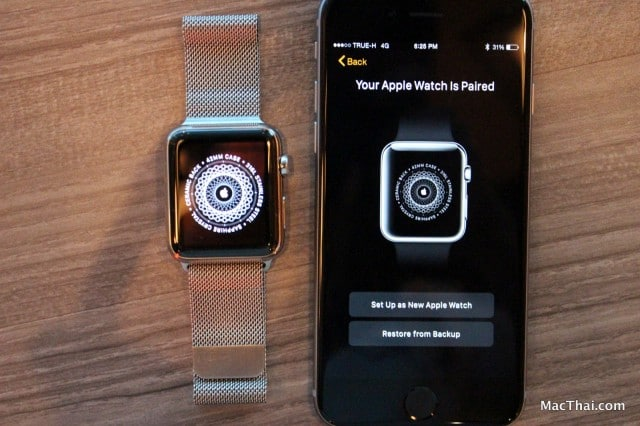 macthai-review-apple-watch-with-milanese-loop-078