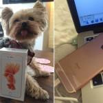 มาได้ไง !? หญิงสาวได้รับ iPhone 6s ก่อนกำหนดวางขายจริงหลายวัน
