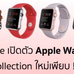 Apple เปิดตัว Apple Watch Sport สองสีใหม่ พร้อมสายสีใหม่อีกเพียบ เริ่มขายแล้ววันนี้