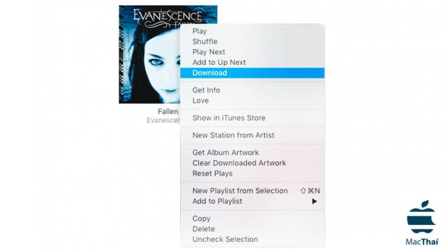 download_songs_from_itunes_cloud_hd