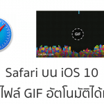Safari บน iOS 10 ปรับปรุงใหม่ !! เล่นไฟล์ภาพ GIF แบบอัตโนมัติได้แล้ว