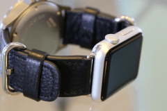 apple watch dual band sinn