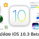 Apple ปล่อย iOS 10.3 Beta 1 มาพร้อม Find My AirPods, หน้าตา Settings แบบใหม่