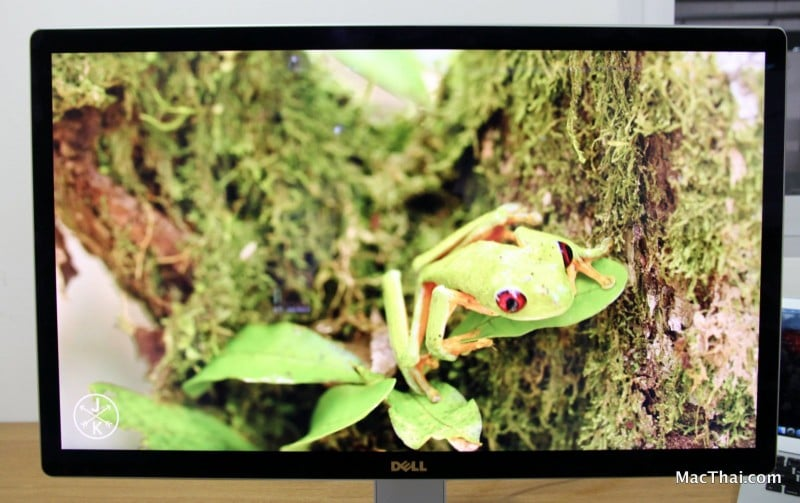 macthai-review-dell-monitor-024