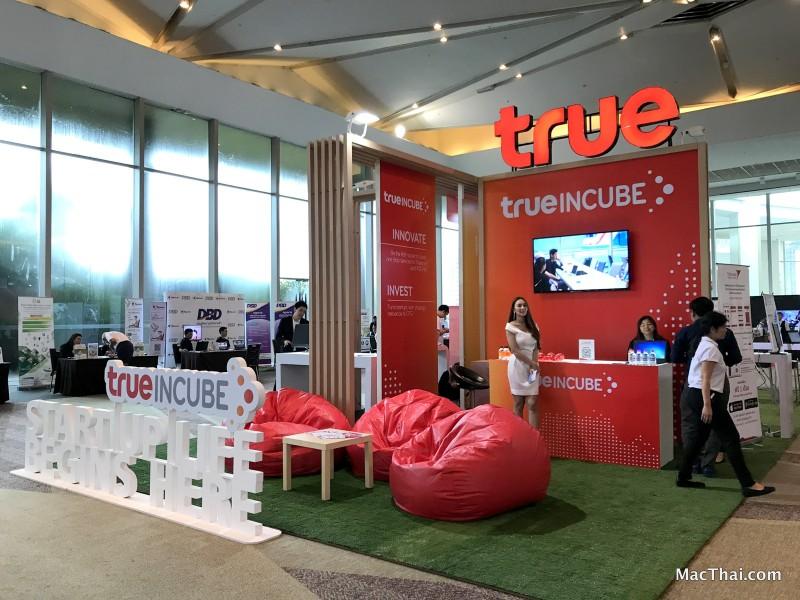 13-macthai-true-business-forum-2031