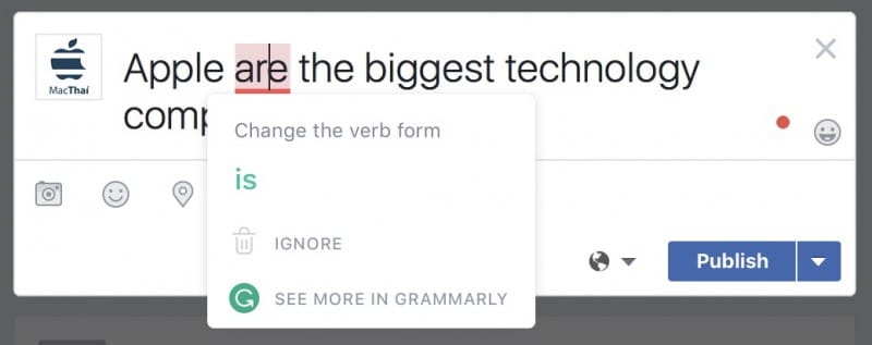 grammarly macos windows-8