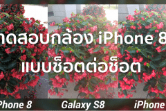iPhone 8 Camera Test vs Galaxy S8 & iPhone 7 2