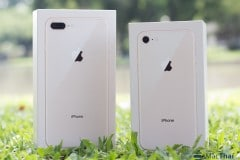iphone-8-review-photograph-3