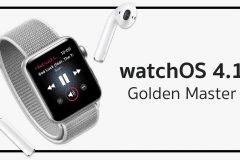 watchOS 4.1 gm