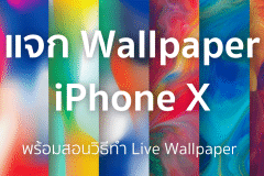 how-to-download and set live wallpaper-featured