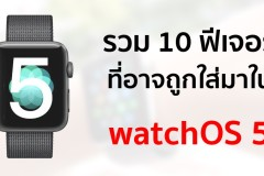 watchos-5-macrumors-readers-wishlist