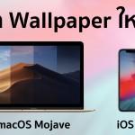 แจก Wallpaper iOS 12 และ macOS Mojave ทุกแบบ เอาไปใช้ก่อนใคร