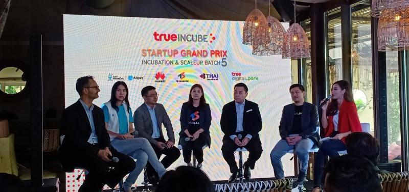 true-incube-1