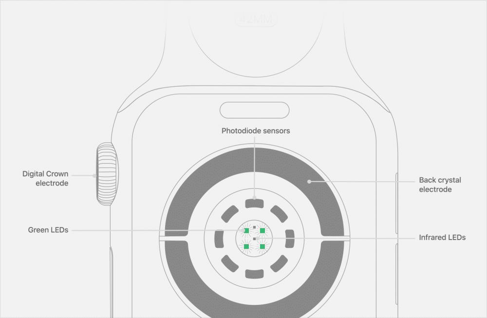 watch-series4-measure-ecg-sensors