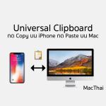 Tips: Universal Clipboard กด Copy บน Mac กด Paste บน iPhone