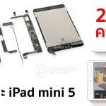 iFixit ชำแหละ iPad mini 5 พบมาพร้อม RAM 3GB, ความจุแบตเตอรี่ 5,124 mAh เท่าเดิม