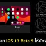 Apple ปล่อย iOS 13 Beta 5 สามารถเลือกขนาดไอคอนบน iPad ได้, ปรับความดังได้ 34 ระดับ, Awards 2000 วัน