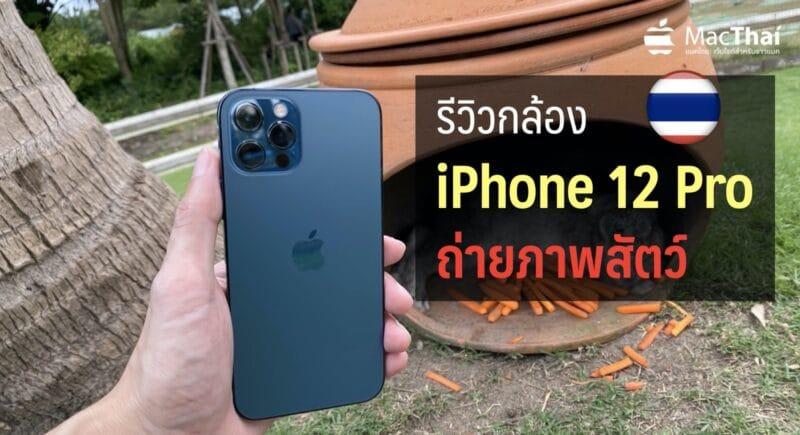 รีวิวกล้อง iPhone 12 Pro : ถ่ายภาพสัตว์ ภาพธรรมชาติ ชมความคมชัดของกล้องใหม่ [ชมภาพ]
